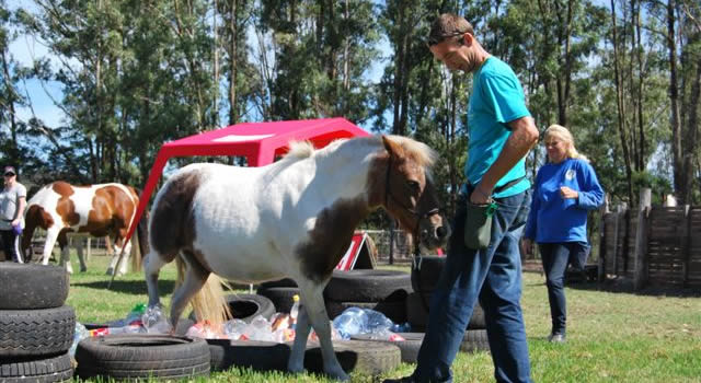 Robyn Greyling animal behaviour specialist -clicker training horses and other animals